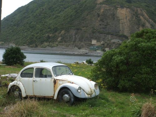 rusting volkswagon in beachside landscape